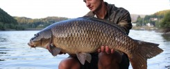 Carretes Carpa Carpfishing